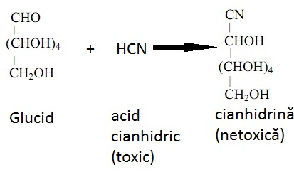 407_glucose-reaction-with-hcn